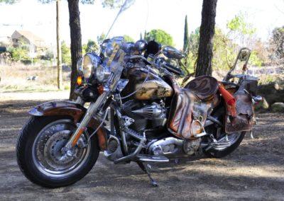 Moto personalizada Harley Davidson